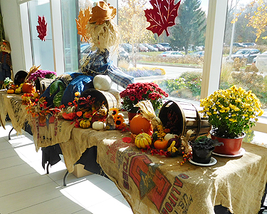 Fall Harvest Display of Fresh Vegetables and Flowers