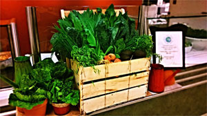Display of fresh vegetables in corporate café account